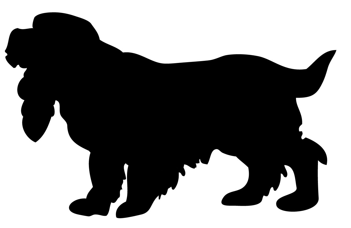 Cocker Spaniel clipart Coral is Day Spaniel Graphics