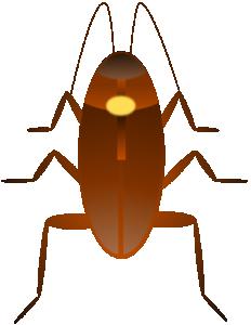 Cockroach clipart Cucaracha Cockroach Cockroach Clip Download