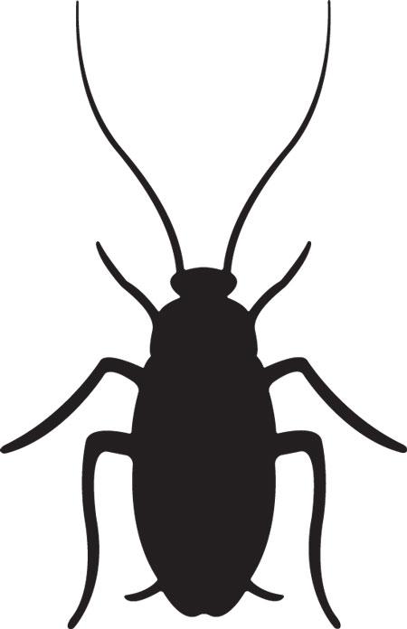 Black clipart cockroach Clip art WikiClipArt clip Cockroach