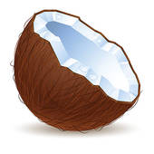 Coconut clipart Art coconut Coconut a Clip