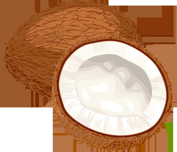Coconut clipart Images Panda coconut%20clipart Clipart Clipart