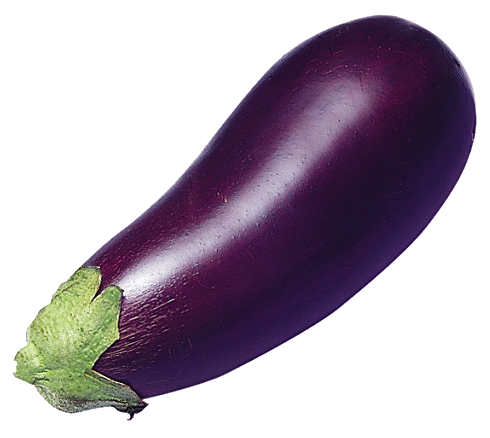 Eggplant clipart vector Page Free Art Clipart Free