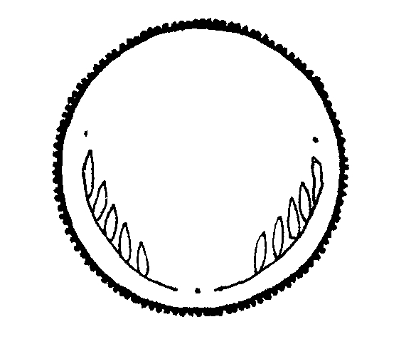 Coin clipart black and white White Black And  Clipart