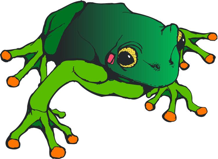 Animl clipart reptile Clip Clipart Images Panda salmonella%20clipart