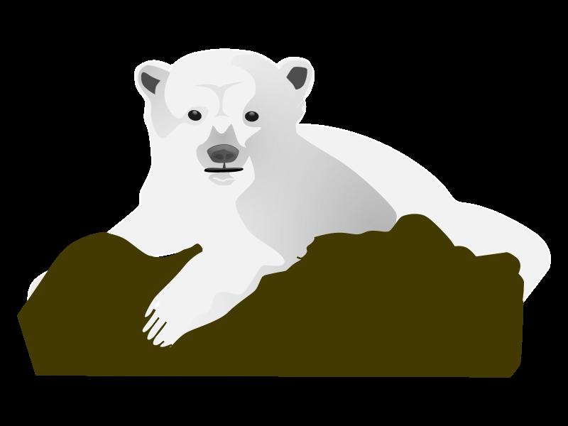 Bear Cub clipart snow bear Bear Knut Bear Polar Animations