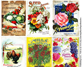 Collage clipart cool music Antique Seed Vegetables Seed Garden