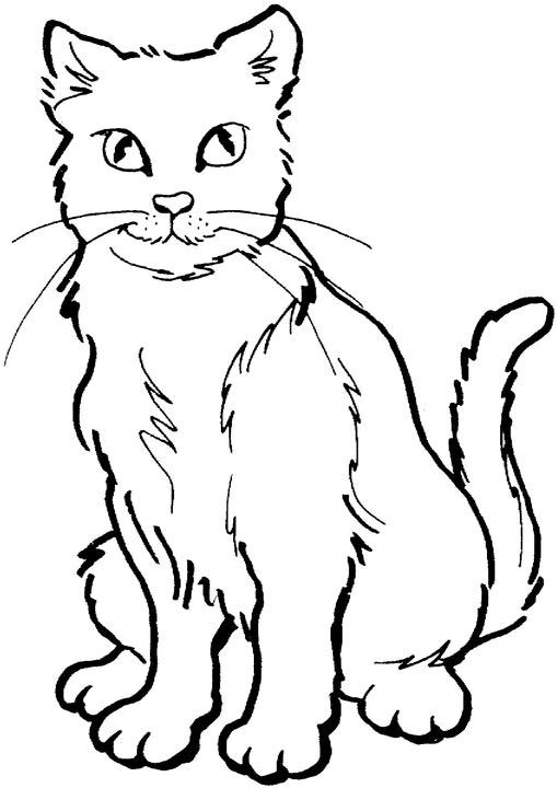 Color clipart cat Coloring Line collection Cats Cat