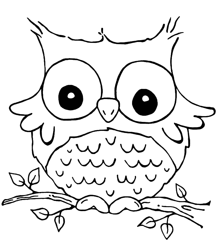 Color clipart owl Owl Color Print Owl Coloring