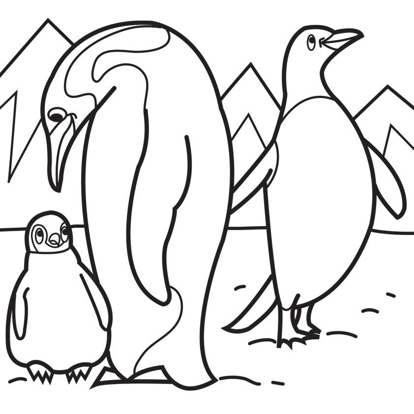 Color clipart penguin Clipart  Panda Pages Penguin