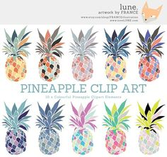 Color clipart pineapple COLOR RAINBOW FRUIT These SET