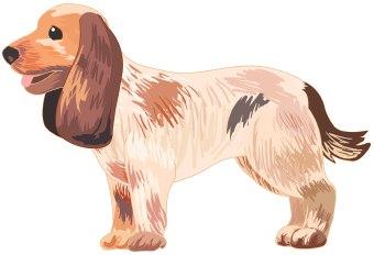 Pets clipart dog owner Clip art Dog