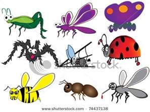 Bugs clipart jungle Using Homeschool the colorful images