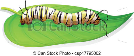 Butterfly clipart growth Clipart caterpillar collection clipart Butterfly