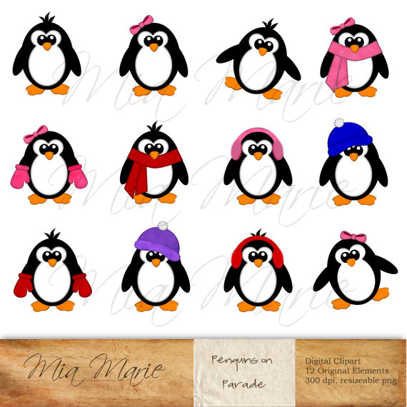 Bird clipart penguin Winter Clip Penguin  Bird