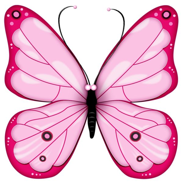 Pink Rose clipart pink black butterfly On ideas best Pink Pinterest