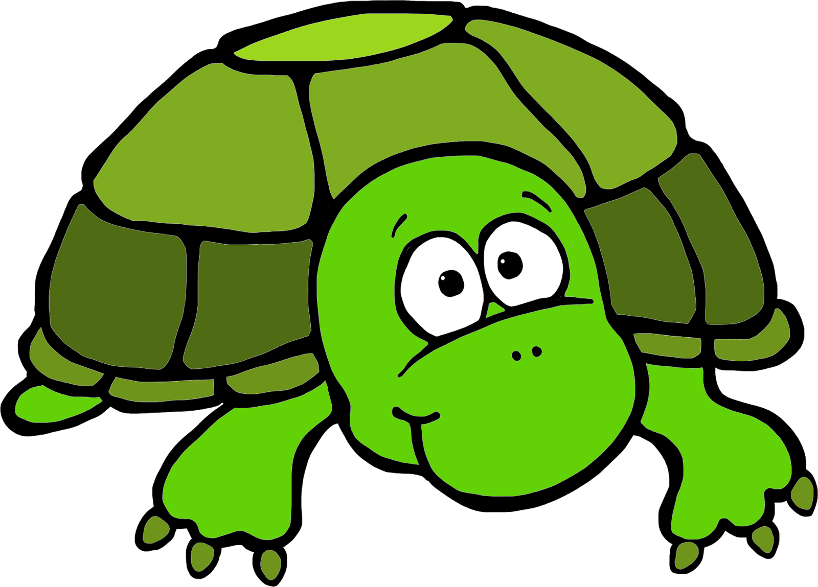 Sea Turtle clipart turtle face #10