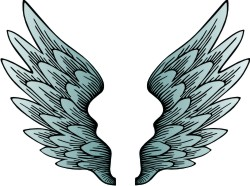Wings clipart printable Vector Clip Wings Free Clipart