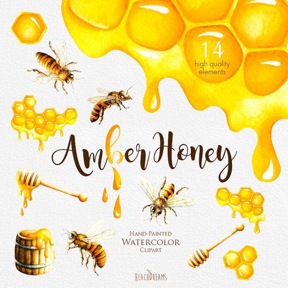 Bee Hive clipart honeycomb Colors yellow art painted Summer
