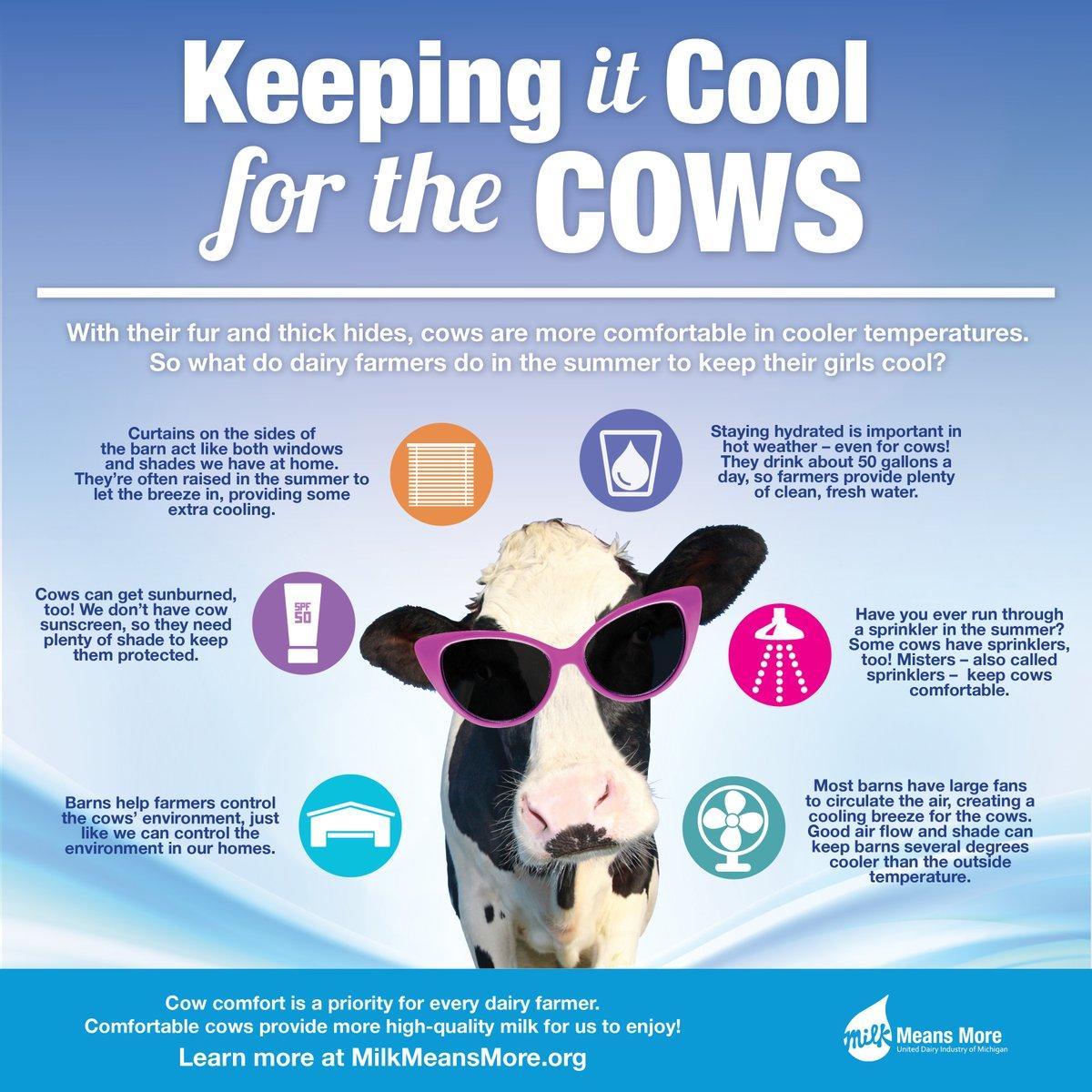 Comfort clipart hot milk Likes replies Means retweets Milk