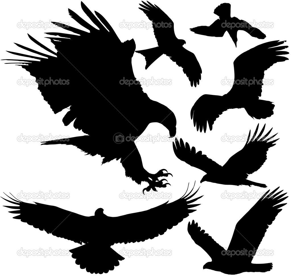 Condor clipart Falcon falcon Clipart clipart clipart