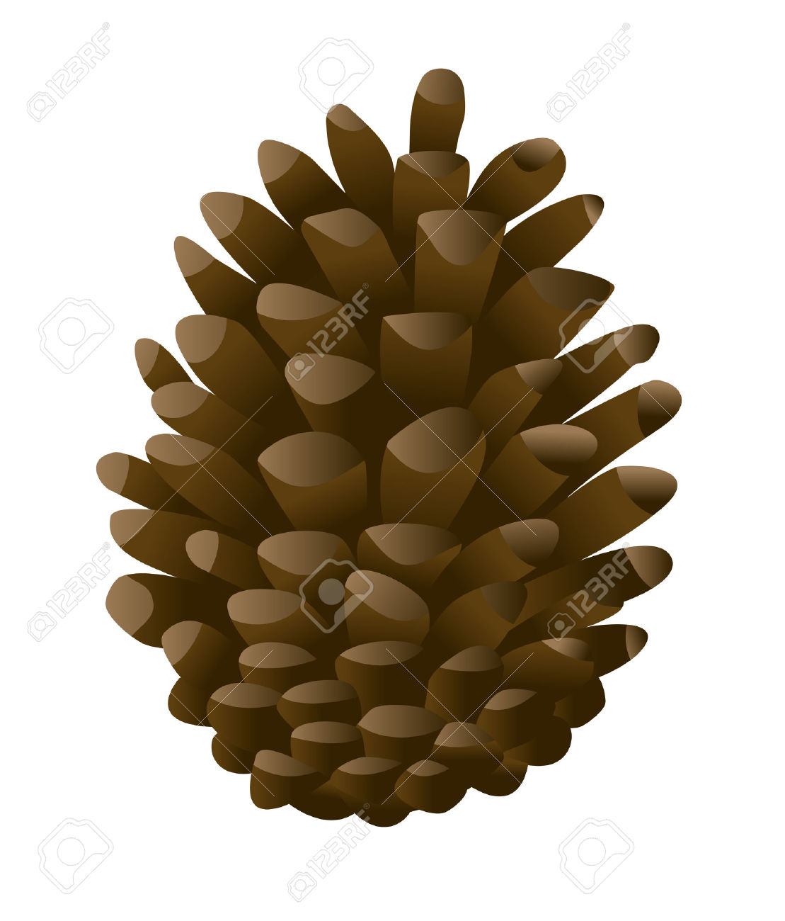 Pine Cone clipart cartoon Outline Cone Cone Pine collection