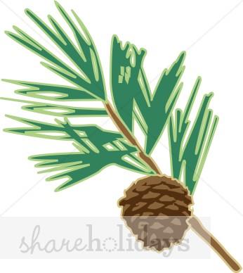 Pine clipart pine needle Clip Pine Clipart – Needle