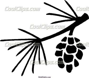 Pine Cone clipart pine leaves Outline Pine Cone Pine Cone