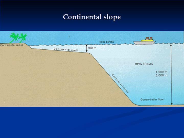 Continent clipart plain Of University side of Carolina