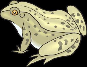 Toad clipart bumpy #8