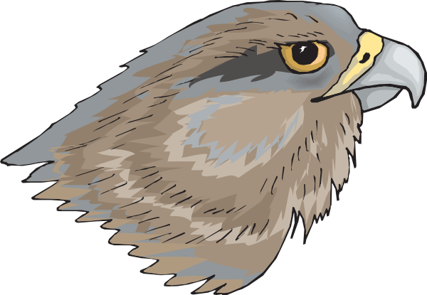 Simple clipart hawk #13
