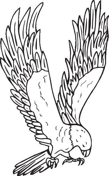 Harris Hawk clipart clipart black and white #2