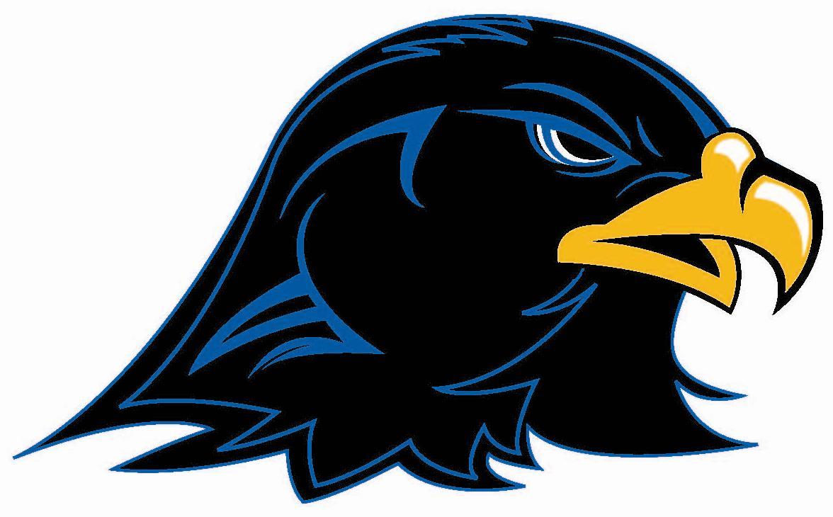 Biohazard clipart heda 4 Hawk mascot 4 mascot