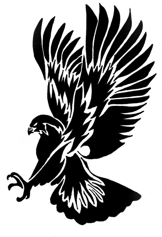 Harris Hawk clipart clipart black and white #1