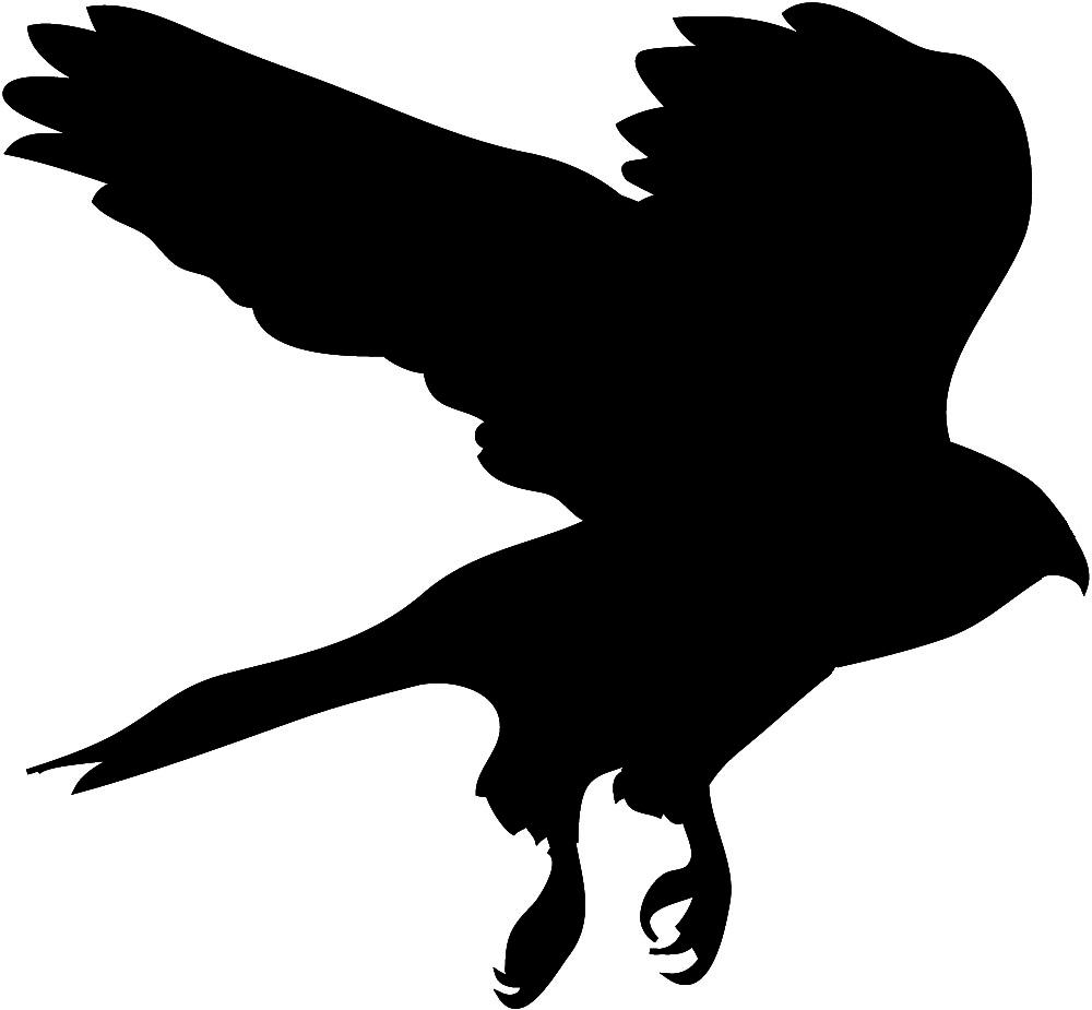 Pigeon clipart air animal 2 Hawk WikiClipArt Hawk clipart