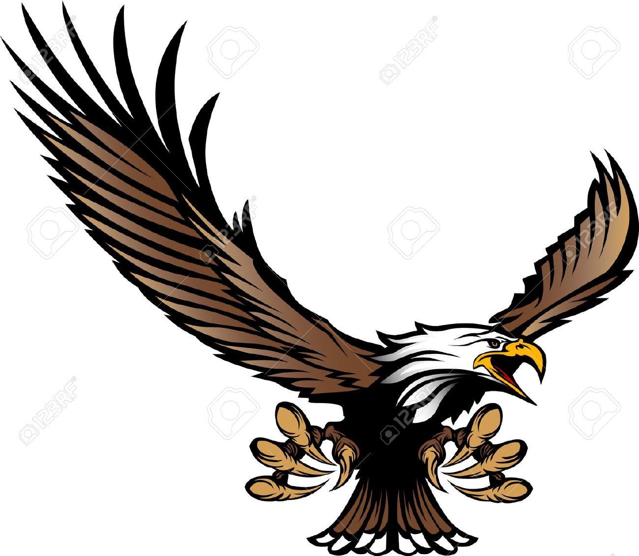 Bald Eagle clipart hawk Art Clipart Top 32 Clip
