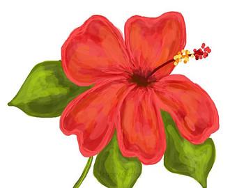 Petunia clipart hibiscus flower Etsy Coral Coral Art Hibiscus