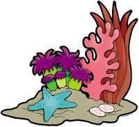 Coral Reef clipart Reef Clipart Coral Reef Savoronmorehead