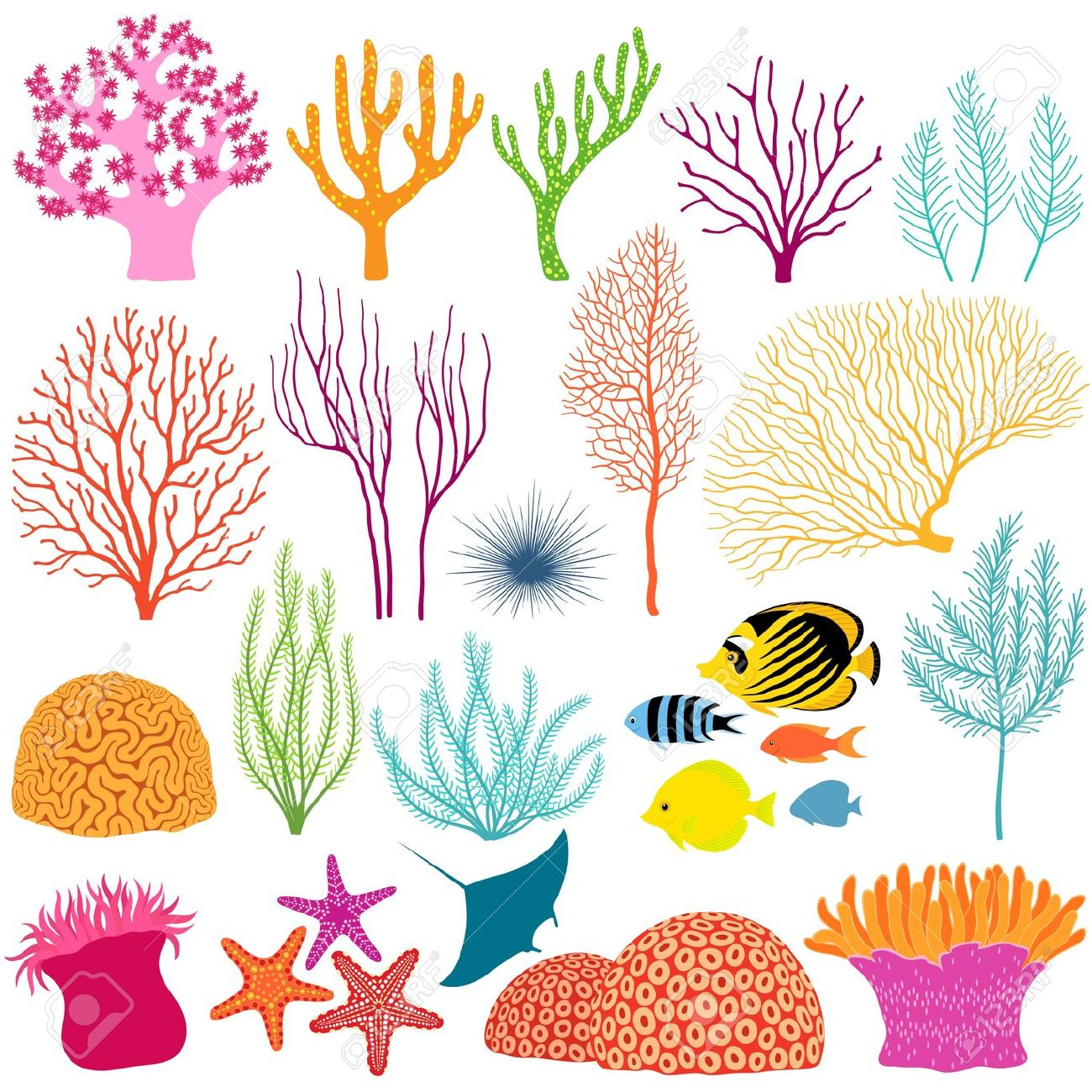 Reef clipart And Find Vector EPS Sea