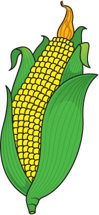 Corn clipart Corn art clipart com Corn