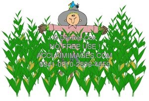 Cornfield clipart cartoon Illustration: A Illustration: A Corn