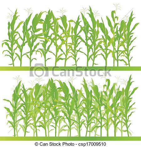 Cornfield clipart wheat plant Csp17009510 illustration Clip Art field