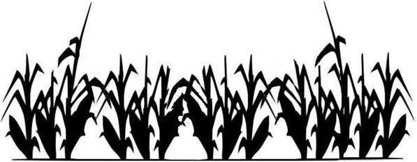 Cornfield clipart wheat plant – Field Download Art Corn