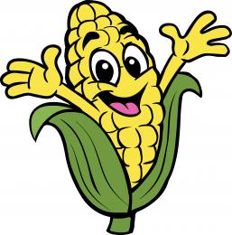 Cornfield clipart corn maze Pumpkin Corn Corn Maze Pumpkin