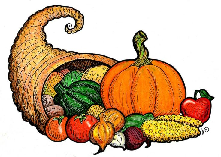 Cornucopia clipart For Thanksgiving for art and
