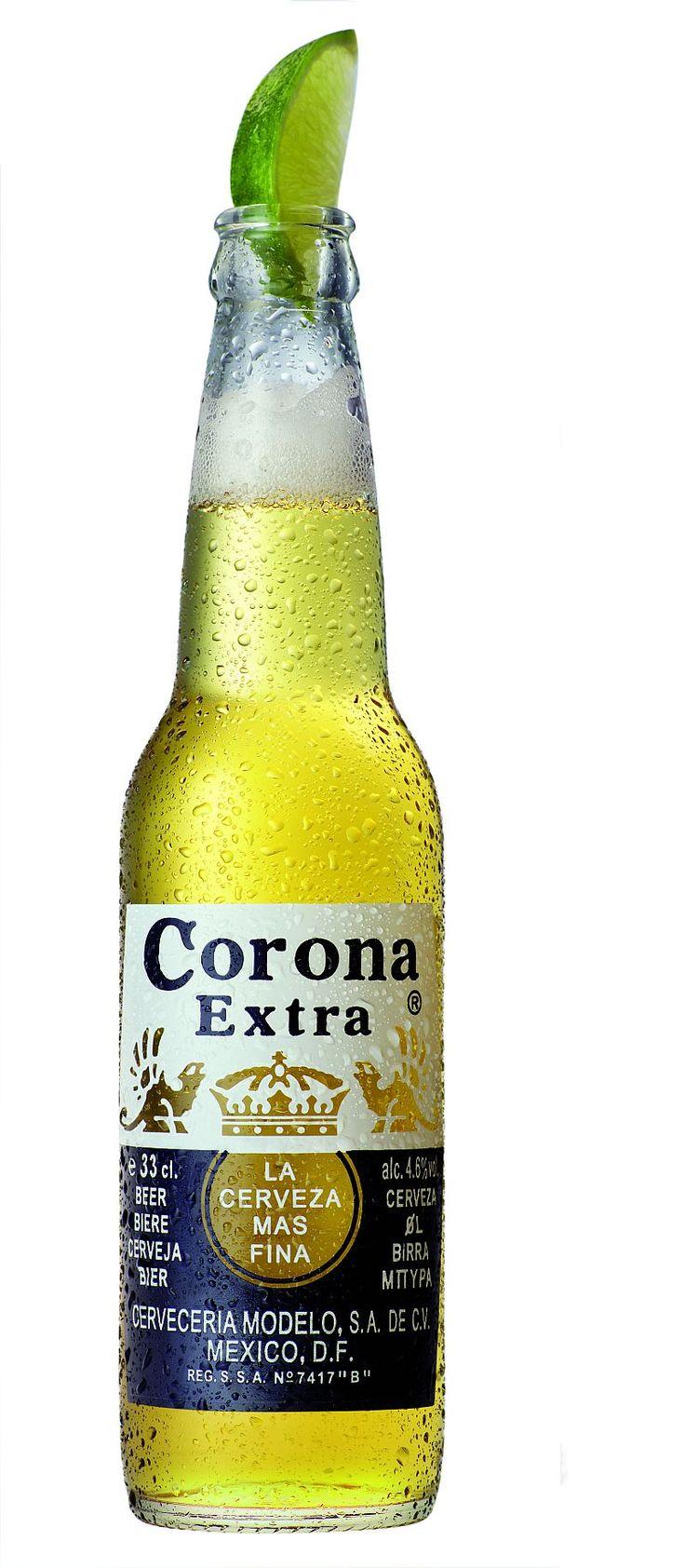Corona Extra clipart Pinterest 25+ straw? Best a