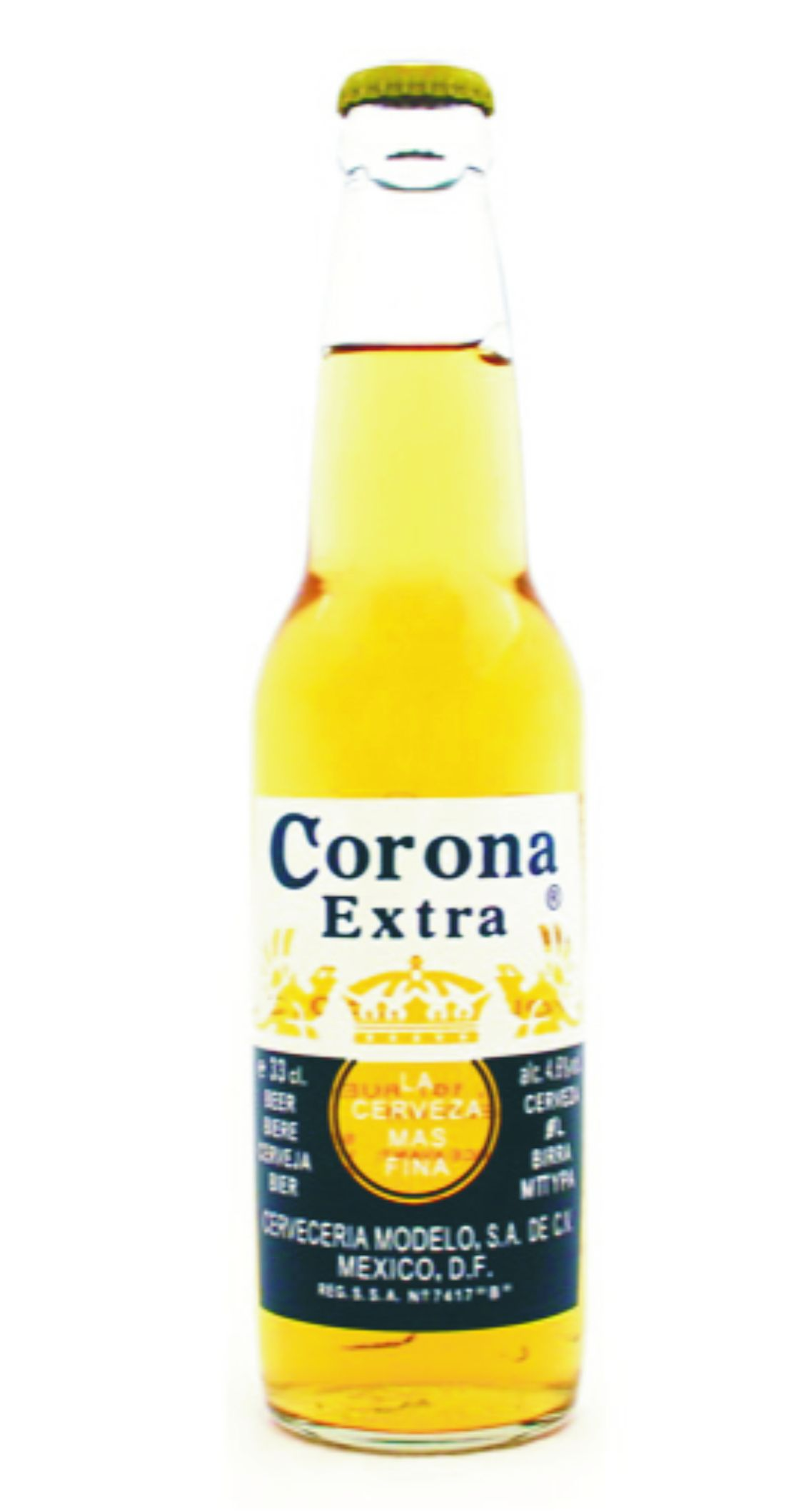 Corona Extra clipart Png Logo  Bottle Png