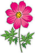 Cosmos clipart earth moon Graphics flower From: Kb cosmos
