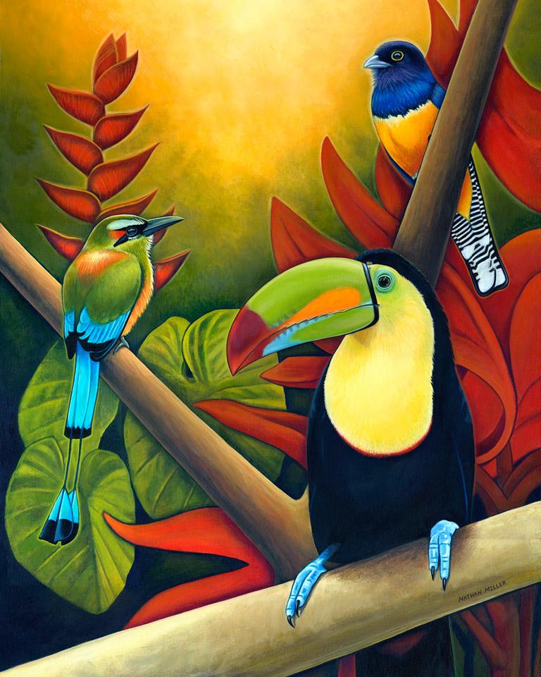 Parrot clipart costa rica Miller Art Bird Tropical Rican