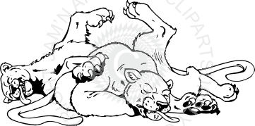 Dead clipart cougar Dead panther panther