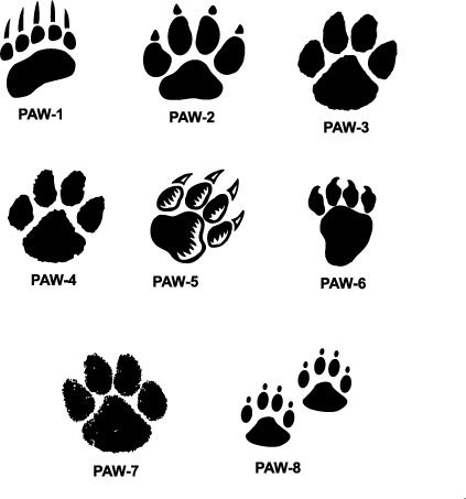 Tiger Print clipart drawing #2